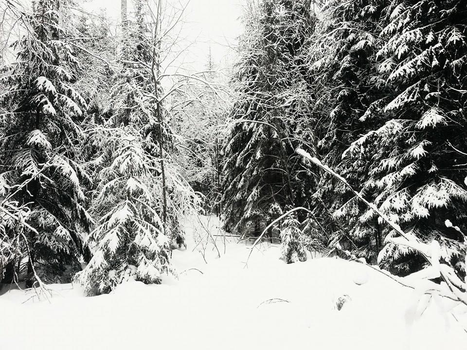 Белый ад. Он всюду. Он липкий и ты не можешь скользить на лыжах. Ты не можешь сойти с лыж, потому что провалишься по пояс. Можешь только переставлять ноги с лыжами, каждая из которых с налипшим снегом весит около трёх килограмм.